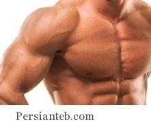 azoleh_persianteb.com