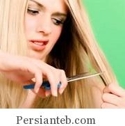 mo khore_persianteb.com