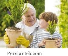 پیشنهاد برای بالا رفتن کیفیت زندگی سالمندان