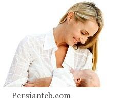 shir dehi_persianteb.com