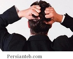 esteses_persianteb.com