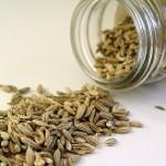 کنترل وزن با گیاه دارویی رازیانه