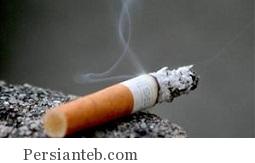 طعم غذاها می تواند در ترک سیگار موثر باشد