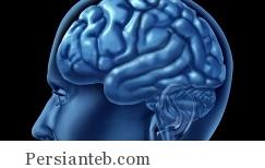 افزایش سلامتی مغز