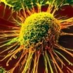 دلایل عدم مراجعه به متخصص بعد از مشاهده علائم سرطان چیست؟