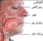 بیماری آنافیلاکسی: علائم، درمان و پیشگیری