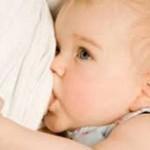 افزایش تولید شیر مادر با این ۵ گیاه دارویی!