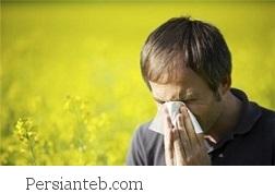 دیدگاه طب سنتی درباره آلرژی