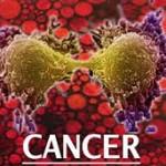 با میوه های ضدسرطان آشنا شوید