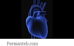 اطلاعاتی در مورد حمله قلبی