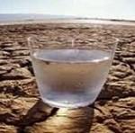 چرا کم آبی برای بدن مضر است؟