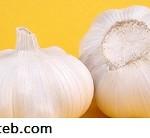 چند مواد غذایی مهم برای سلامت پانکراس (۱)