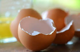 خواص پوست تخم مرغ
