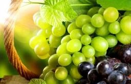 آشنایی با فواید میوه انگور