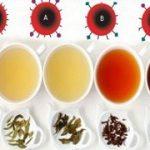 آشنایی با چای مناسب هر گروه خونی