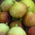 شناخت ۶ خاصیت اعجاب انگیز میوه انجیر
