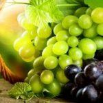 ارزش تغذیهای انگور در طب سنتی