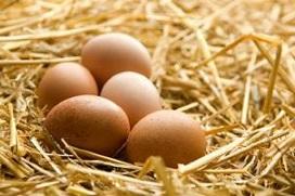 تخم مرغ را شسته شده