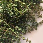 بررسی گیاه آویشن از دید طب سنتی