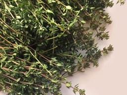 گیاه آویشن از دید طب سنتی