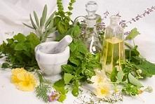 گیاهان دارویی موثر در رشد مو