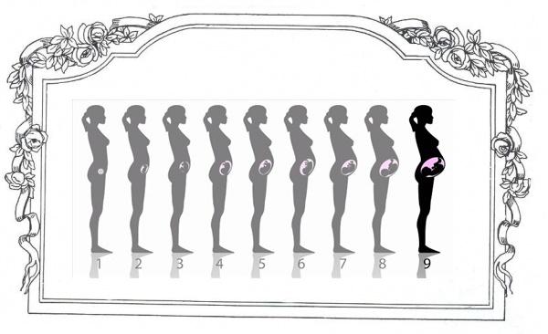 تغییرات بدن بانوان 2