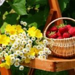 آشنایی با ۲۰ عادت غذایی فصل بهار