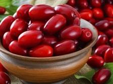 آشنایی با آنتی بیوتیک گیاهی