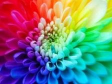 استفاده از رنگ درمانی