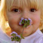 بررسی بیماری های بدن از روی بینی