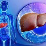 ۴ قدم برای درمان کبد چرب