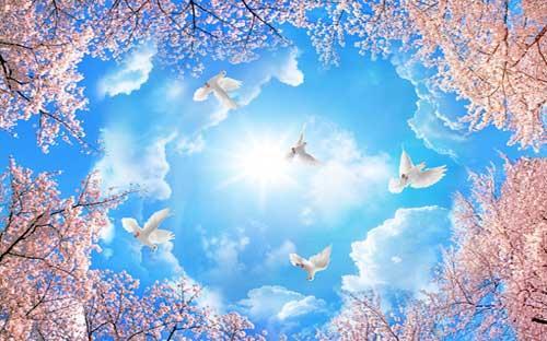 ـعبیر خواب پرواز کردن در آسمان